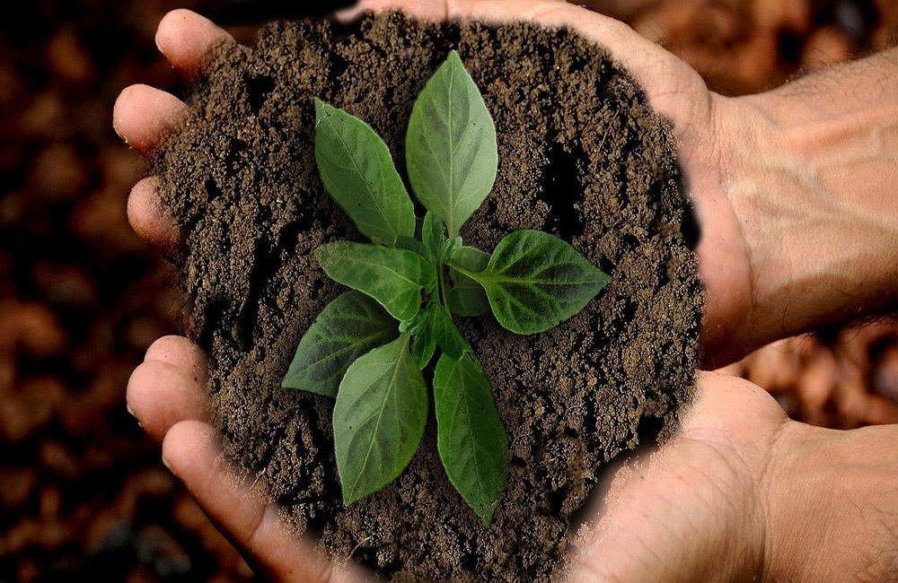 Oia Services e Betaland Malta | Sostenibilità ambientale