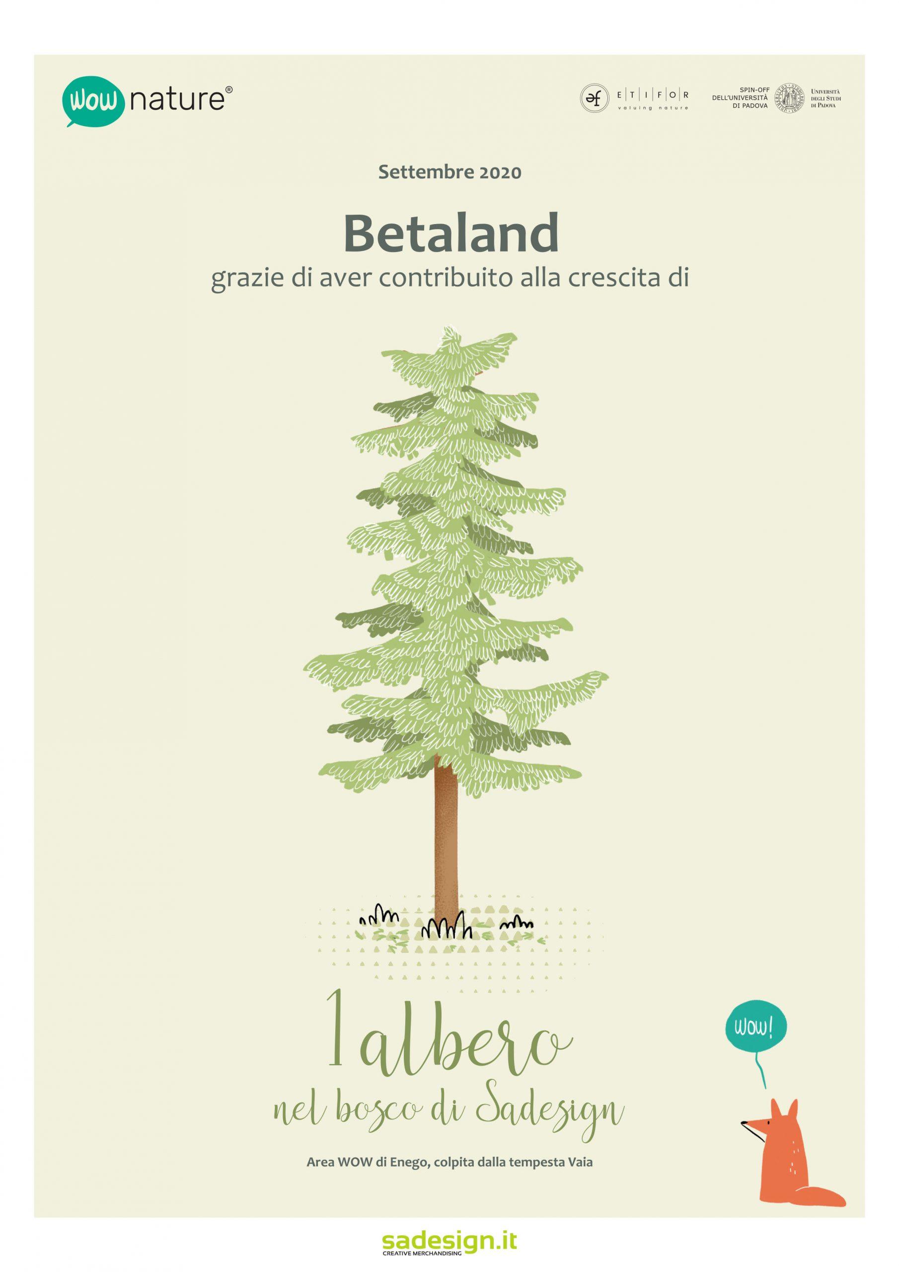 Crescita-e-sviluppo-sostenibile-Oia-services-ltd-betaland